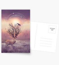 In the Stillness Postcards