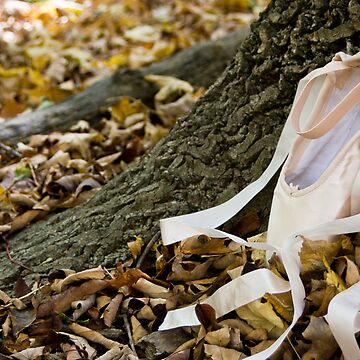 Pointe Shoes and Tree Bark by SeekingDivinity