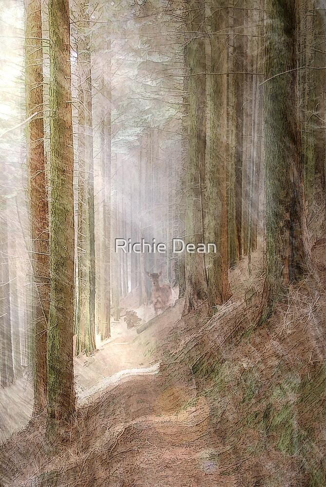 Walk this way ........ by Richie Dean