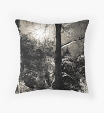 Midnight in the Garden of Good and Evil Throw Pillow