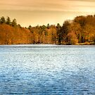 Winter Lake by Gert Lavsen
