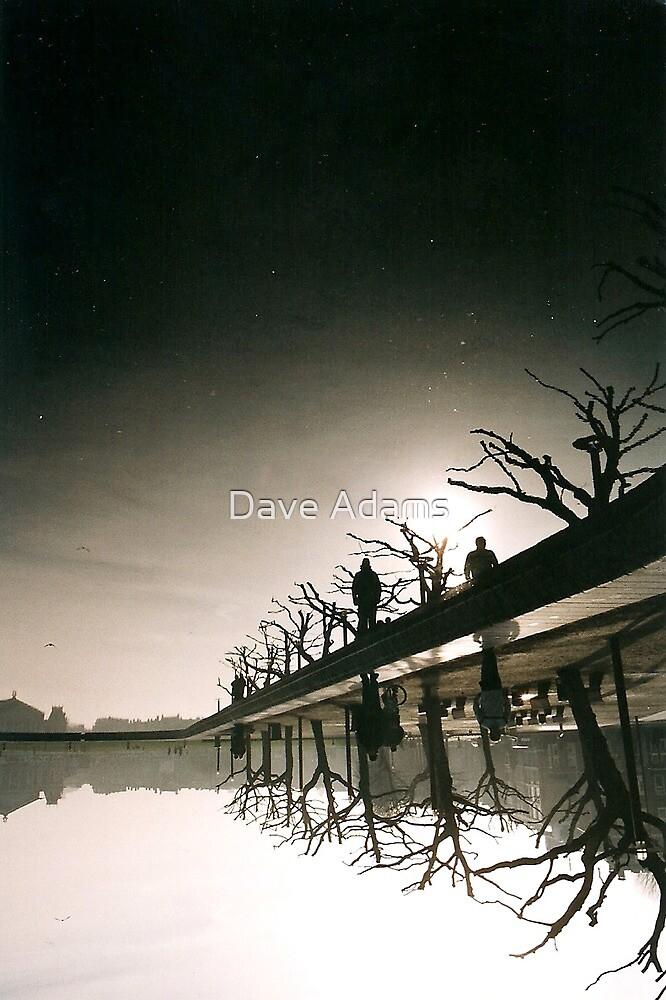Reijksmuseum Day Stars by Dave Adams