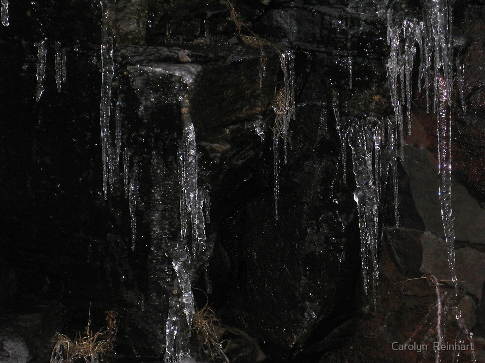 Icicles on a dark day by Carolyn  Reinhart
