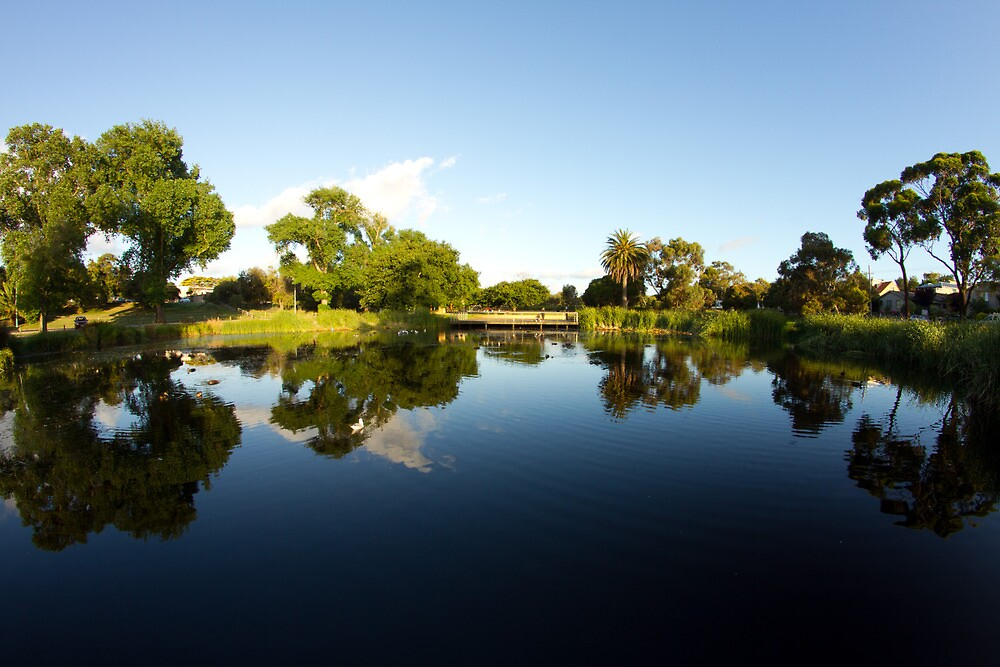 Pond in Frankston by photojunk