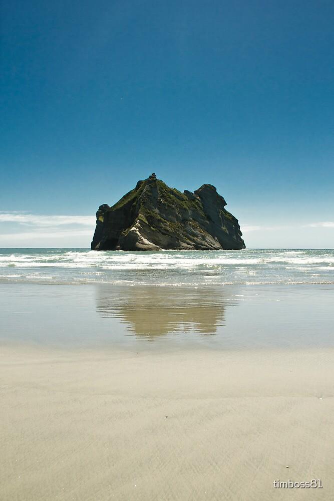 Wharariki Beach, New Zealand by timboss81