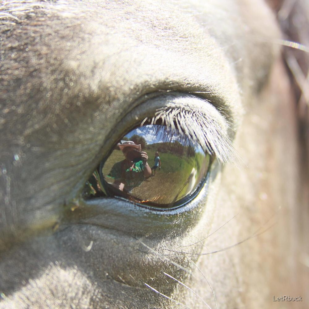 The Eye of the beholder by LetRbuck