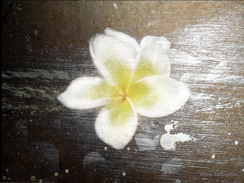 textured flower by mark thompson