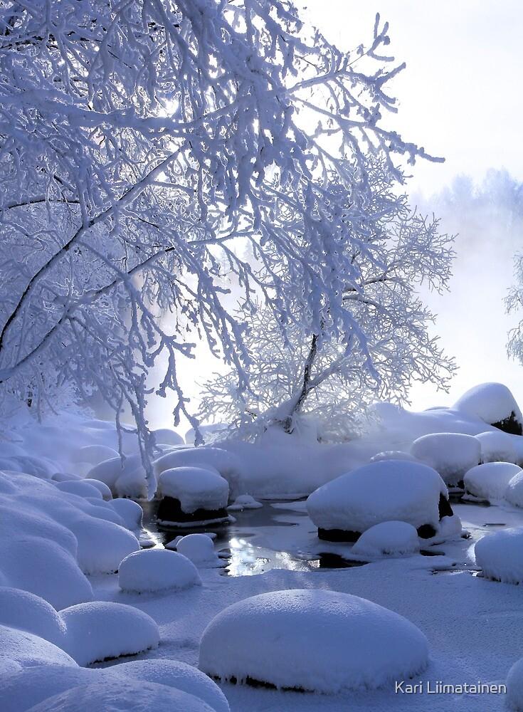 Winter fog by Kari Liimatainen