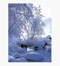 Winter fog Photographic Print