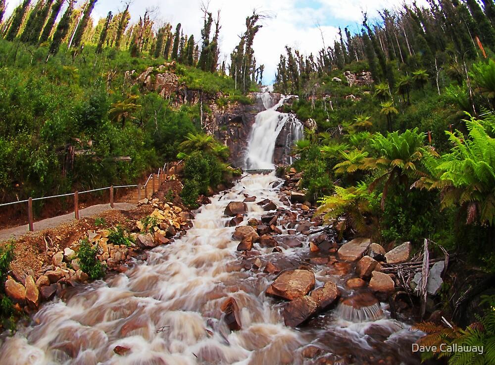 Fisheye Falls by Dave Callaway