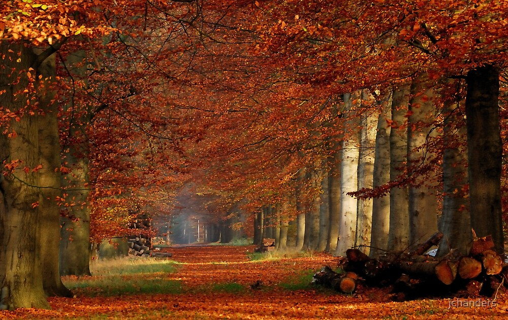 When autumn was at its best by jchanders