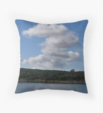 Cardinia Dam Series part 4 Throw Pillow