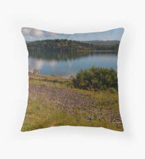 Cardinia Dam Series part 5 Throw Pillow