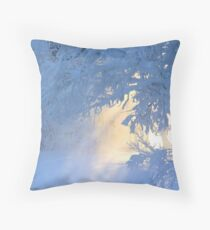 Door to another world  Throw Pillow
