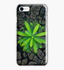 Dry soil - case iPhone Case/Skin