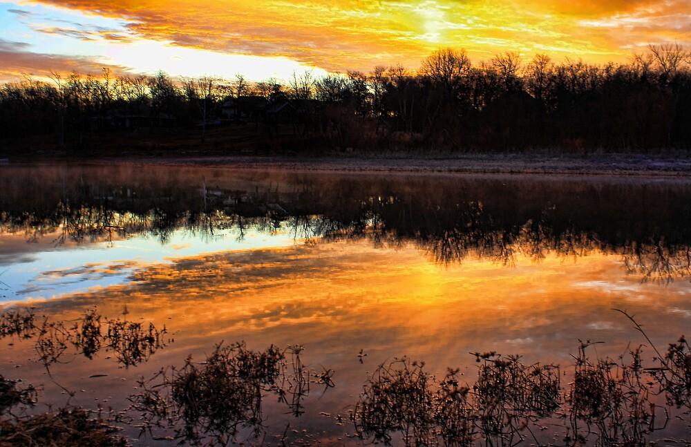 A Marvelous Morning by Carolyn  Fletcher