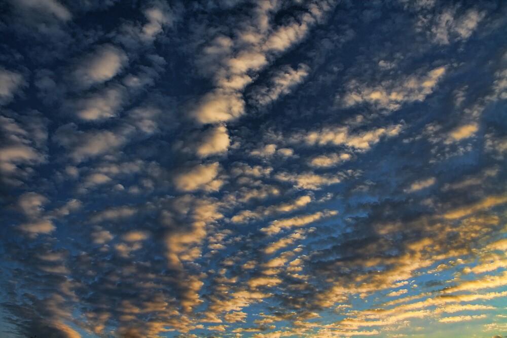 Cloud 20111218-9 by Carolyn  Fletcher