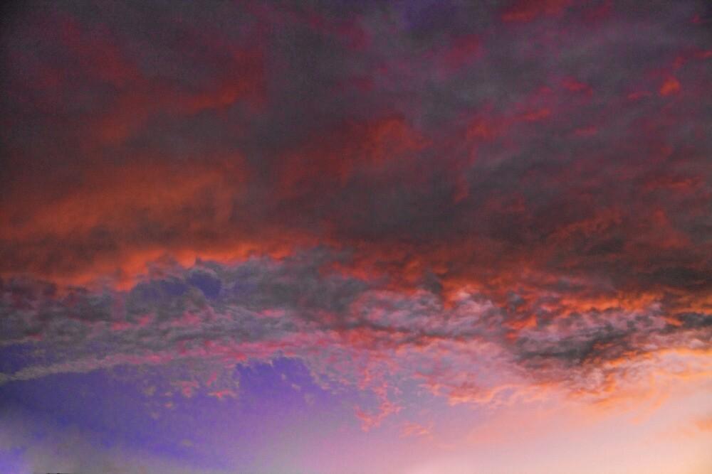 Cloud 20111218-46 by Carolyn  Fletcher