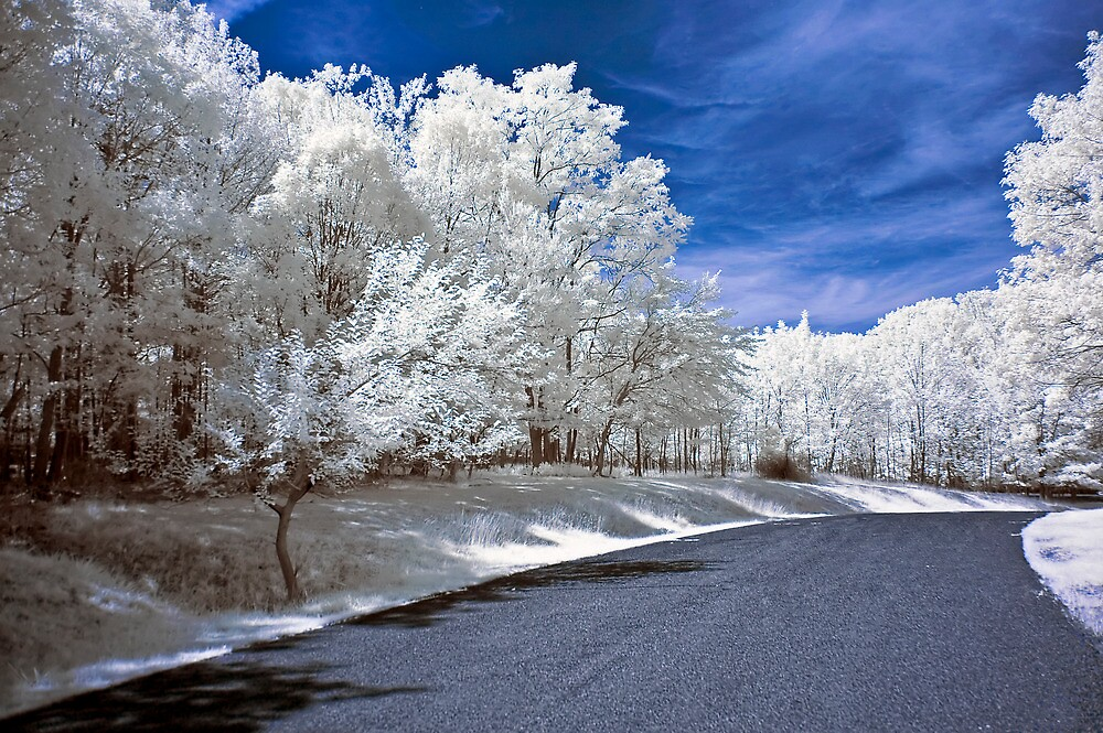 Infrared Road by Anthony L Sacco