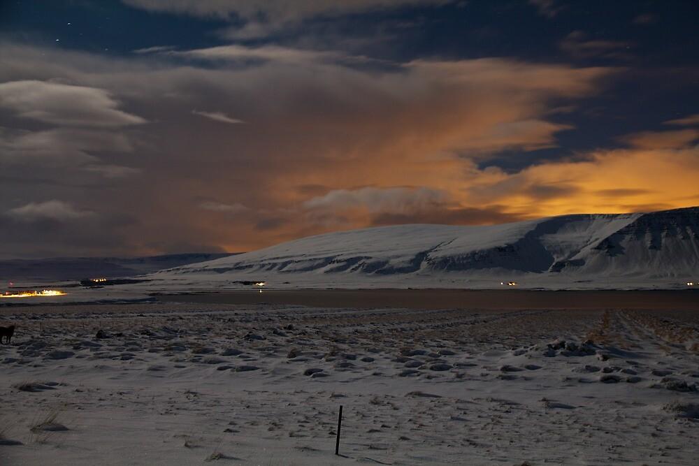 Moonlit Snow Field by Llewellyn Cass