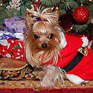 Santa's Helper by Grinch/R. Pross