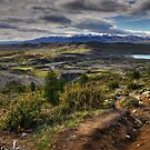 Torres Landscape by Peter Hammer