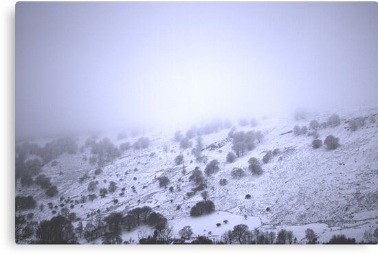 Foggy Mountain by Ailia