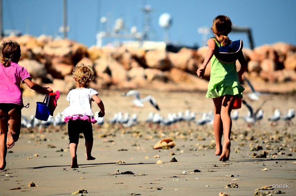 Chasin' seagulls by sneak