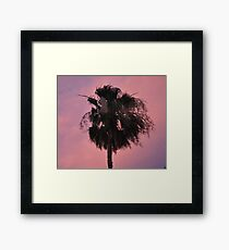 A STATELY PALM SILHOUETTED AGAINST A PINK SUNSET SKY Framed Print