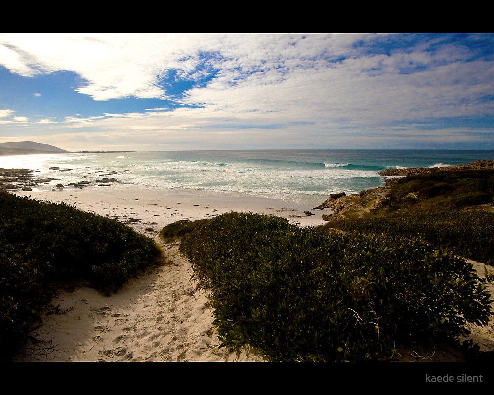 friendly beaches by imagesbyhanson
