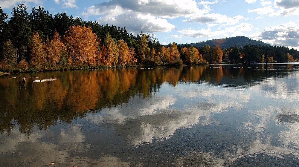 Fall reflections by electro
