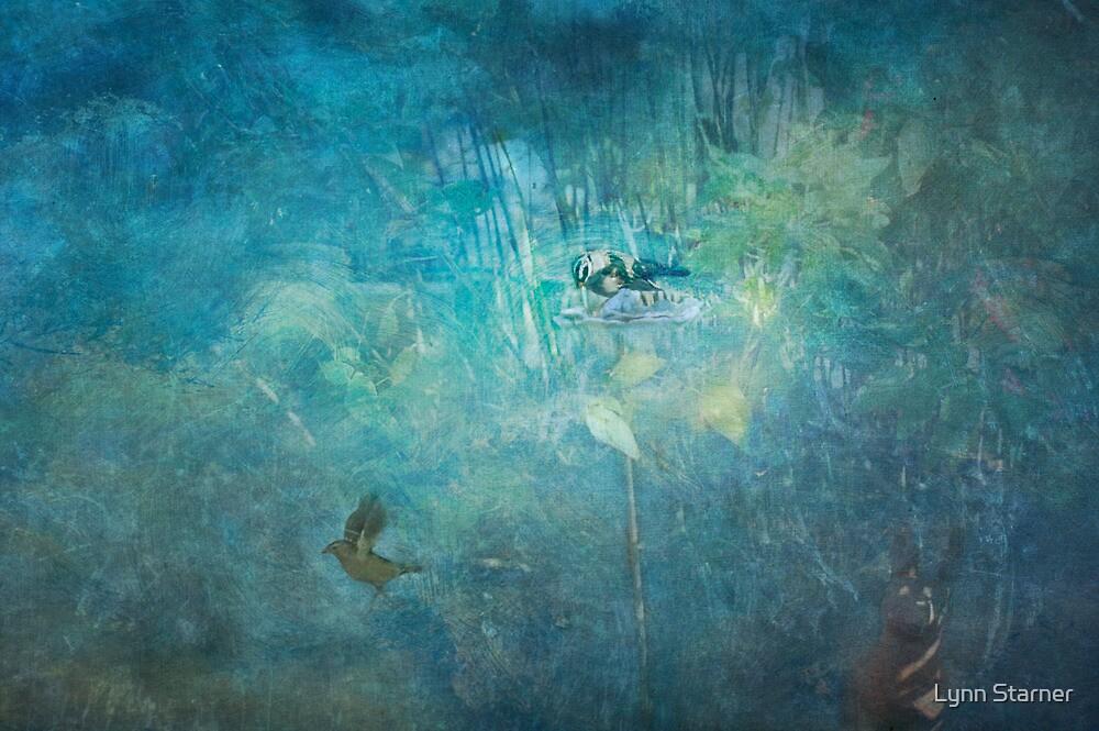Sparrows in the garden by Lynn Starner
