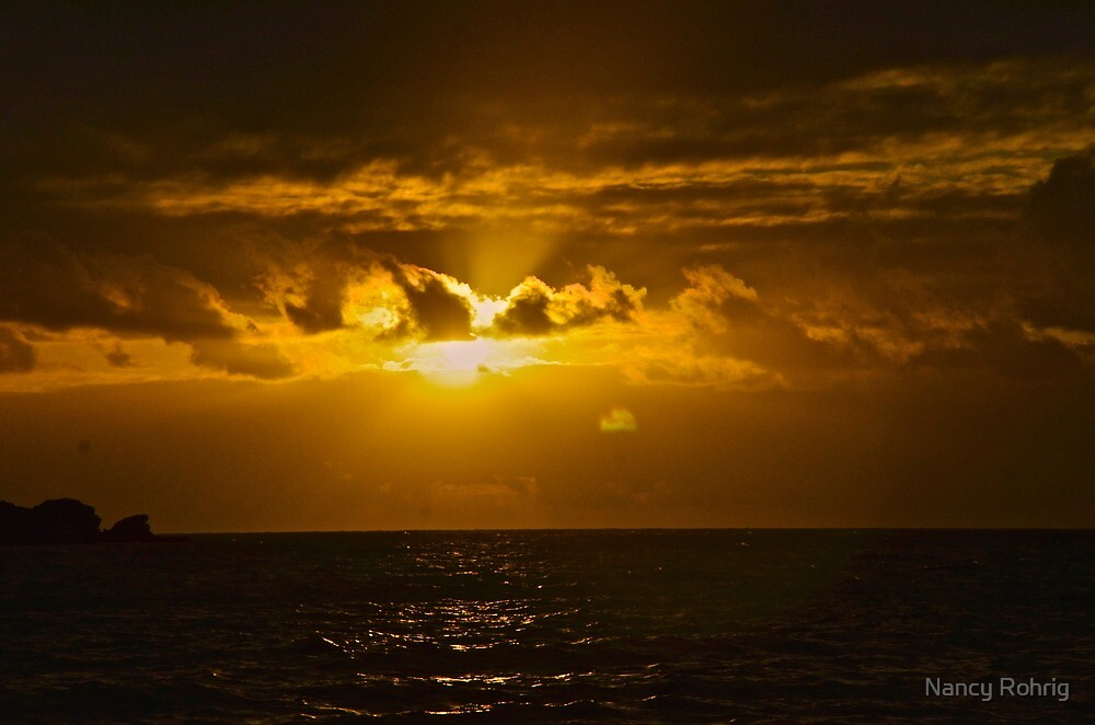 Sunrise special by Nancy Rohrig