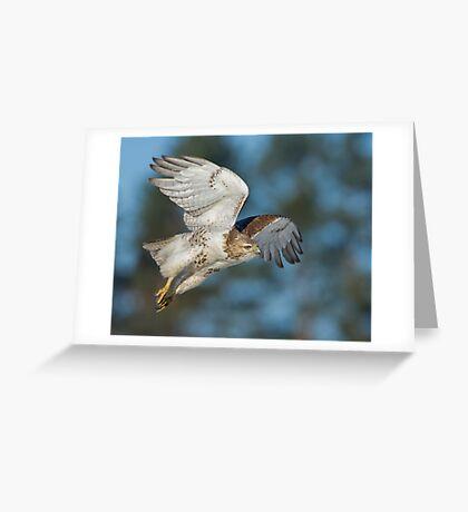 Prowling Around Greeting Card