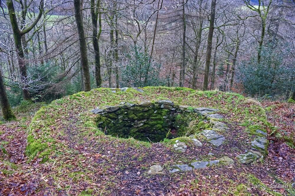 Potash Pit by Jamie  Green