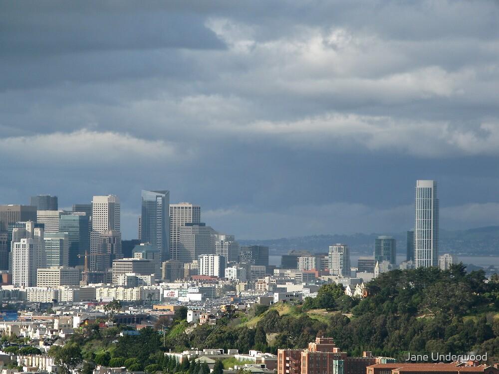 San Francisco Cityscape by Jane Underwood