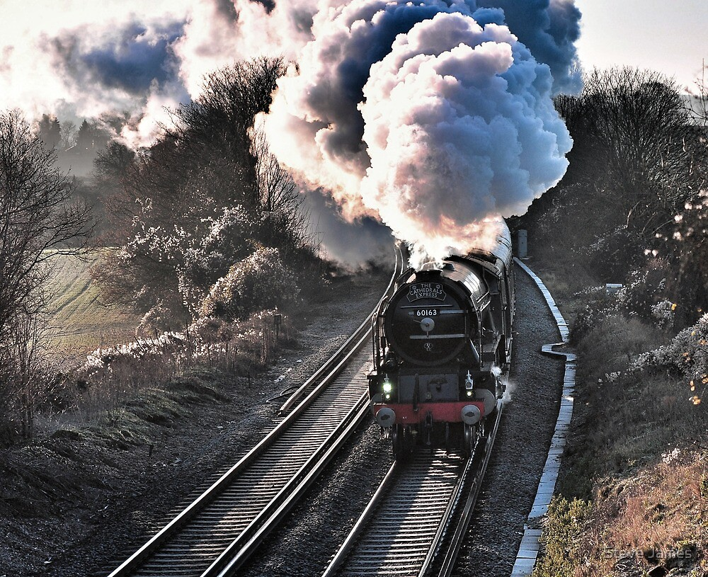 Tornado heading between Sevenoaks and Orpington by Steve James