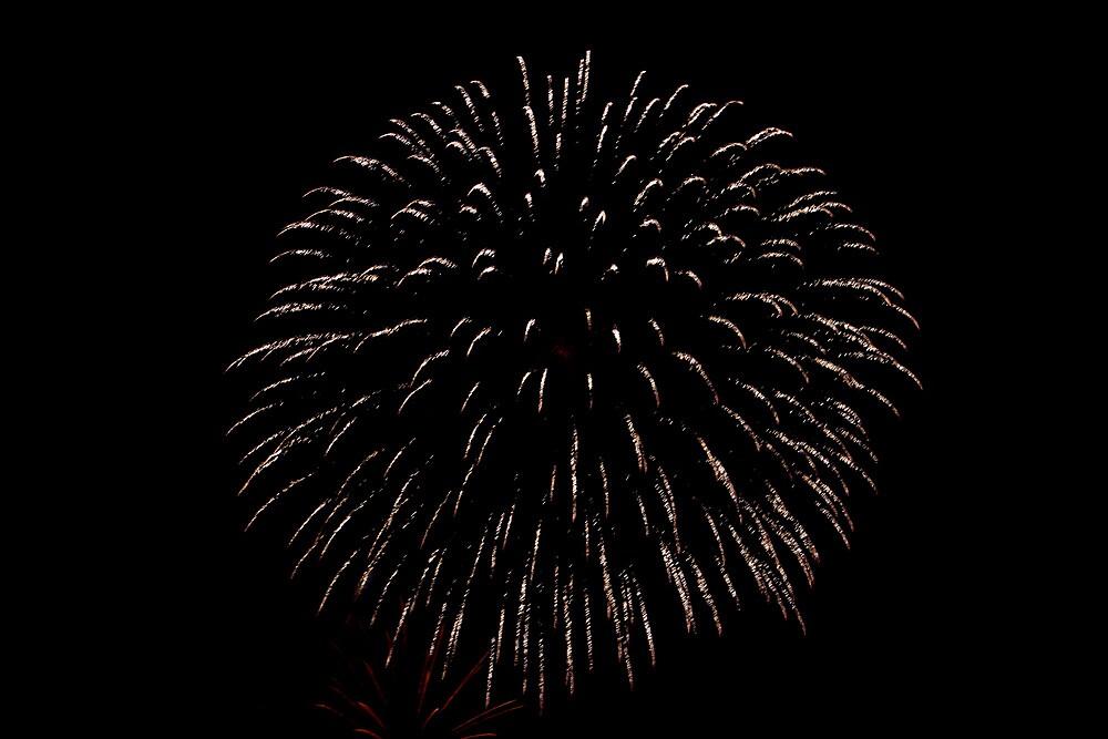 Fireworks (1) by lilyinthewater