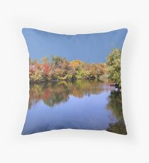 Fall in Indiana Throw Pillow