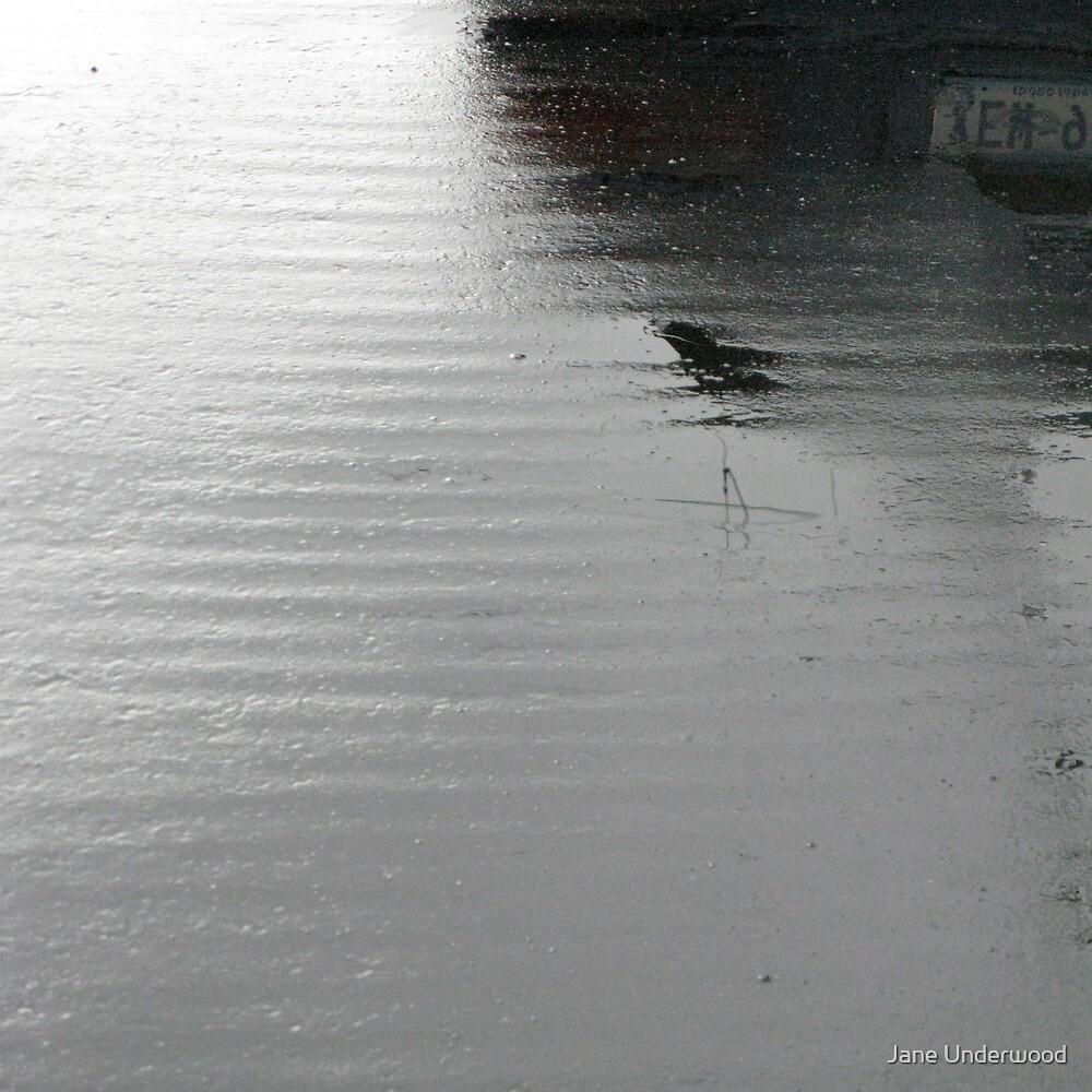 Rainy Day Asphalt Reflections by Jane Underwood