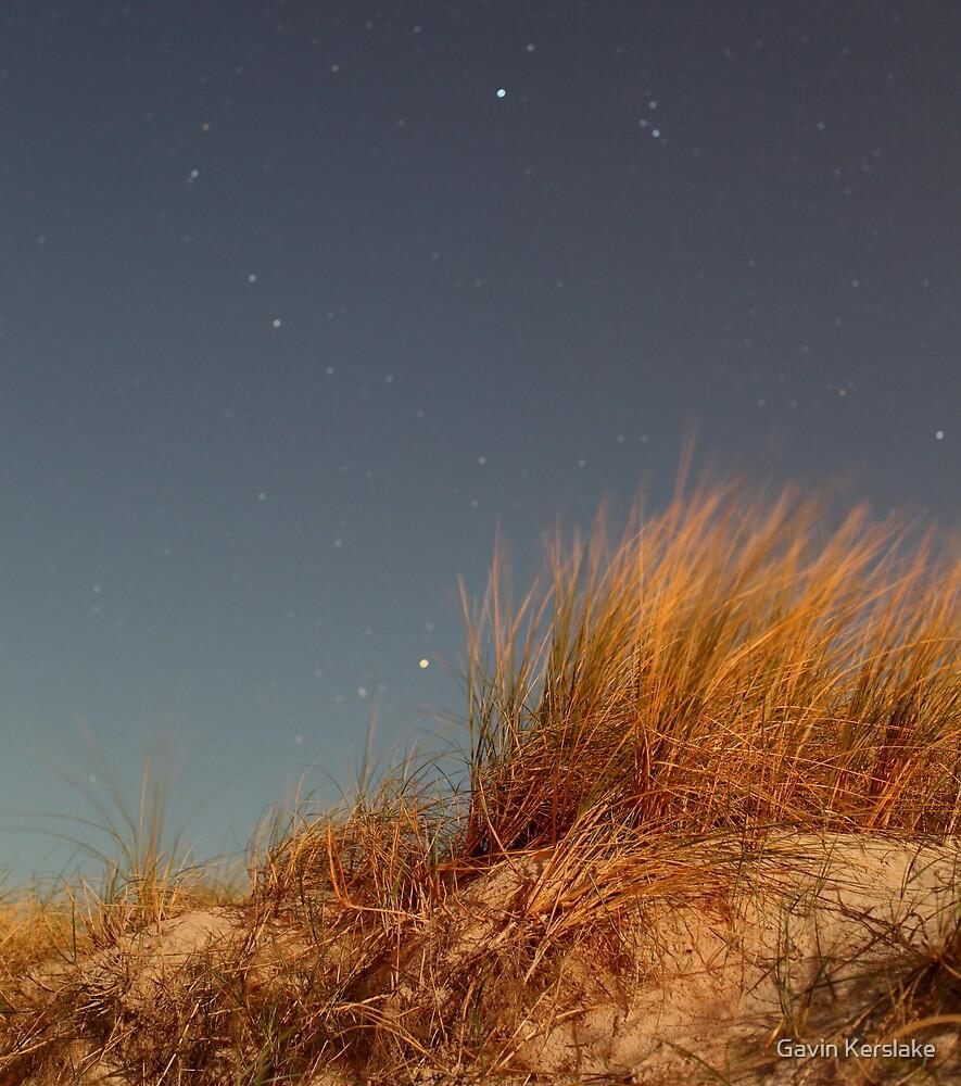 Night, Sand-Dune Grass by Gavin Kerslake