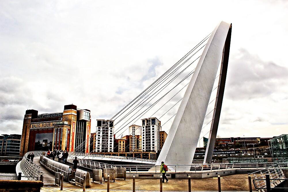 Flipping Bridge  by afiller23