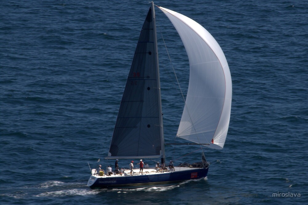 north head manly - sail by miroslava