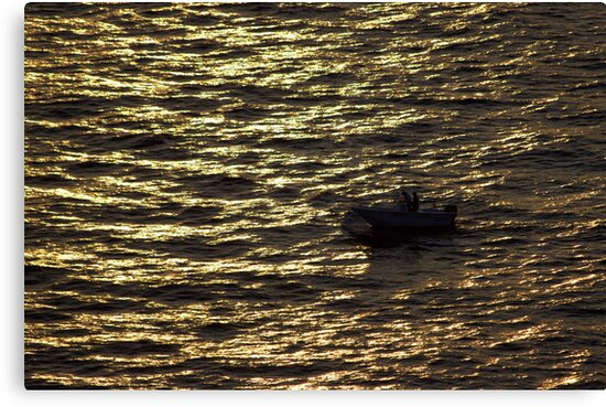 North Head Manly - In sunset rays by miroslava