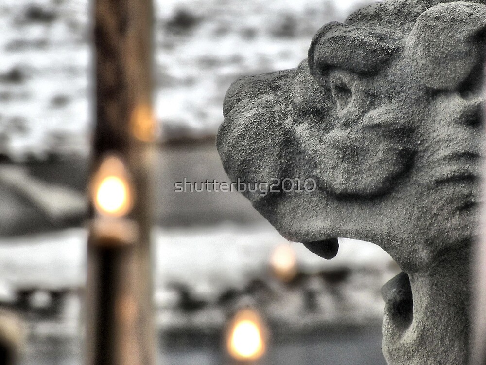 The Castle Guard by shutterbug2010