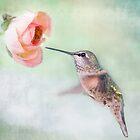 Hummingbirds of Southern California by Susan Gary