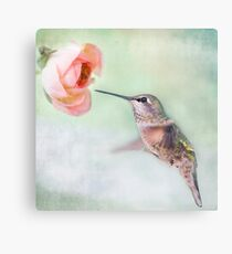 Hummingbird on Green Canvas Print