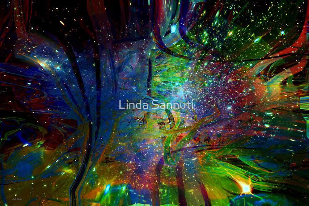 Star Dreamers by Linda Sannuti