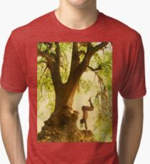 Handstand by the tree tshirt Tri-blend T-Shirt