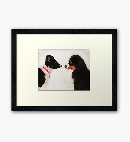 """So Do You Wanna Be Friends ?"" Framed Print"